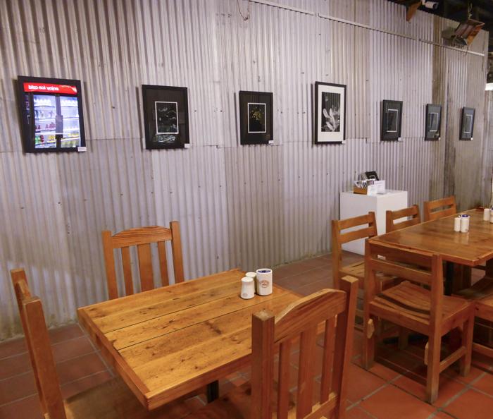 Microcosm at the Bendigo Pottery Cafe