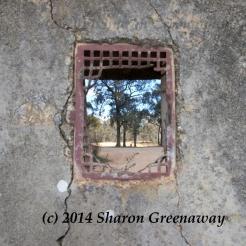 www.sharongreenaway.com