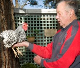 Ian Pollerd, for The Testimonial Show Bendigo Poultry Club