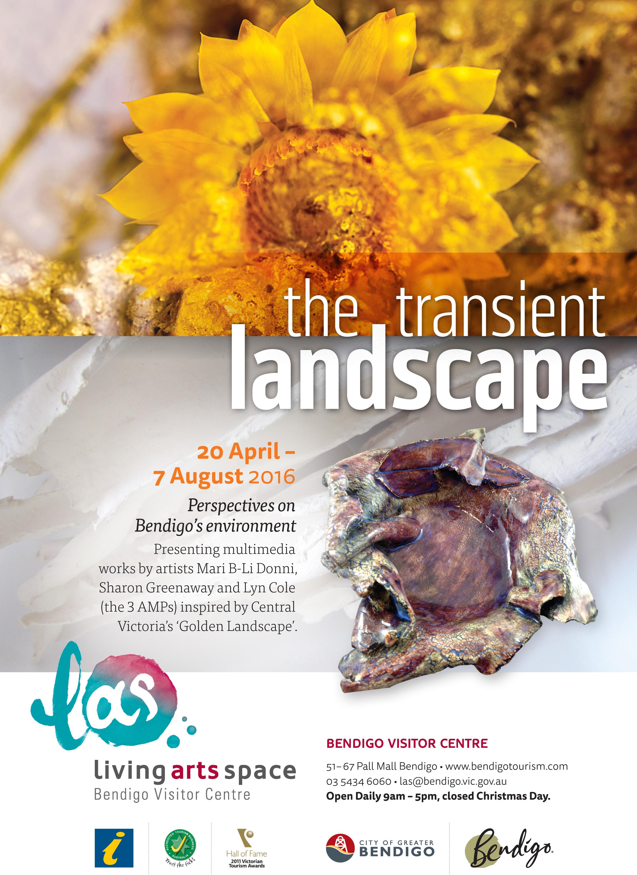 212578 CofGB LAS The Transient Landscape A4 Flyer FA